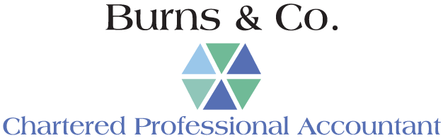Burns & Co Chartered Professional Accountant
